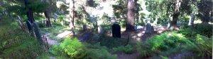 Walhalla Cemetery panorama, miniature